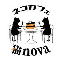 ネコカフェ猫nova