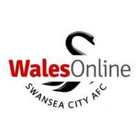 Swansea City Online