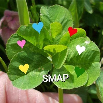 投票 - 2020年東京オリンピック出演希望アーティスト投票Group A 今日も 探してポチッと SMAPに会いたいよぉ⤴⤴ 世界に一つだけの花  https://t.co/sOWKsXbY7N https://t.co/6HqdQZydta
