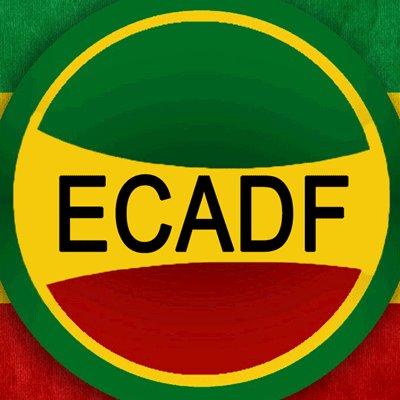 @ECADF