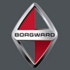 @BorgwardChile