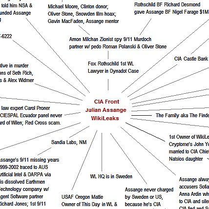 Assange is CIA Chart