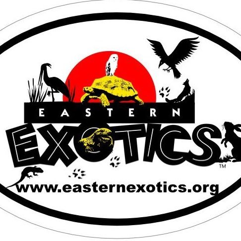 Eastern-Exotics