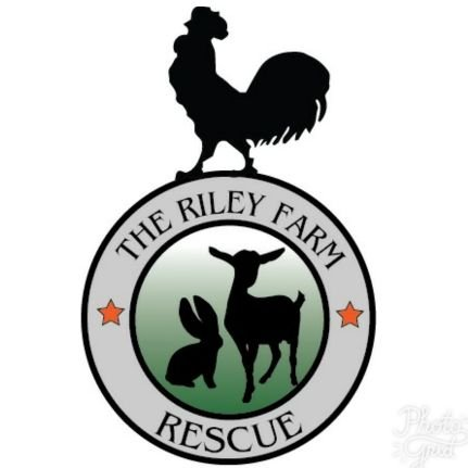 Riley Farm Rescue