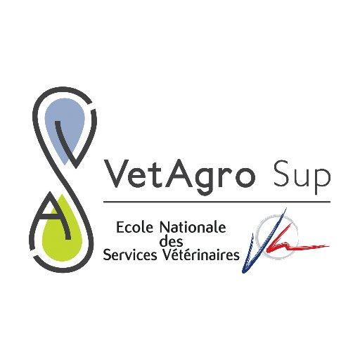 Rencontre un étudiant vétérinaire