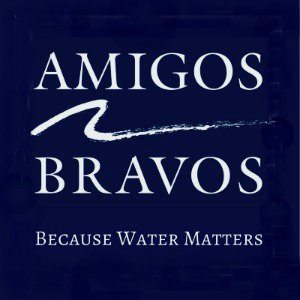 @AmigosBravos1