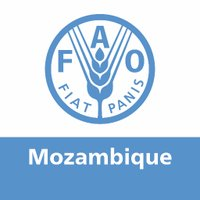 FAO Mozambique