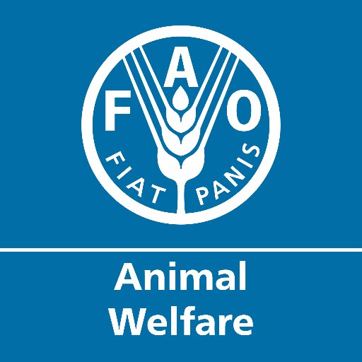 Animal welfare for youth: Part 1 – what is animal welfare?