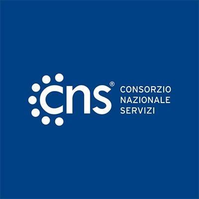 Компания cns официальный сайт сайты страховых компаний в курске