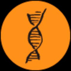 DNA Group Fit