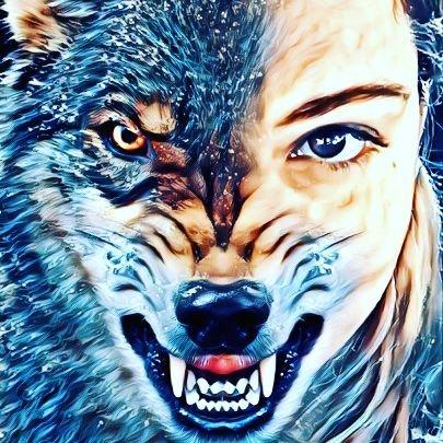 wolfi0393