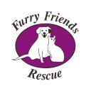 furry friends rescue (@furryfriends) Twitter