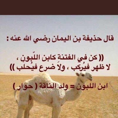 @alalals8