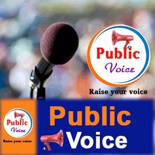public_voice24