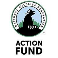 @Wildlife Action