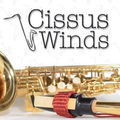 Cissus Winds