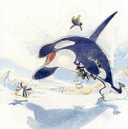 save cetaceans