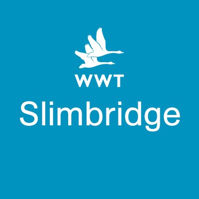 WWT Slimbridge | Social Profile