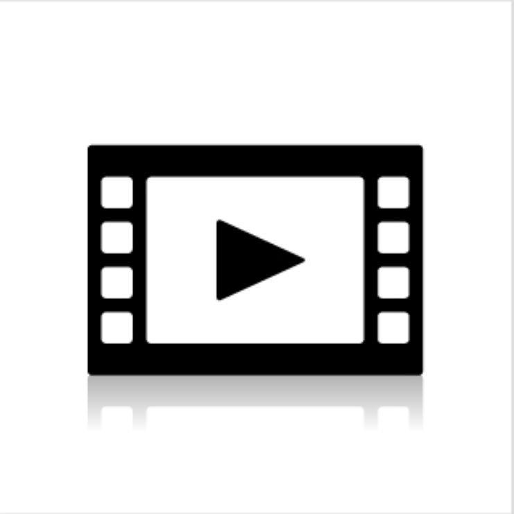 明日の動画
