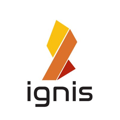 ignis coin bitcoin indonesia