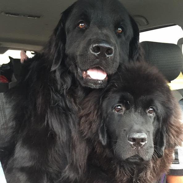 Bear and Emma