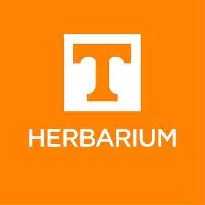 Utk Herbarium Tenn Utkherbarium Twitter