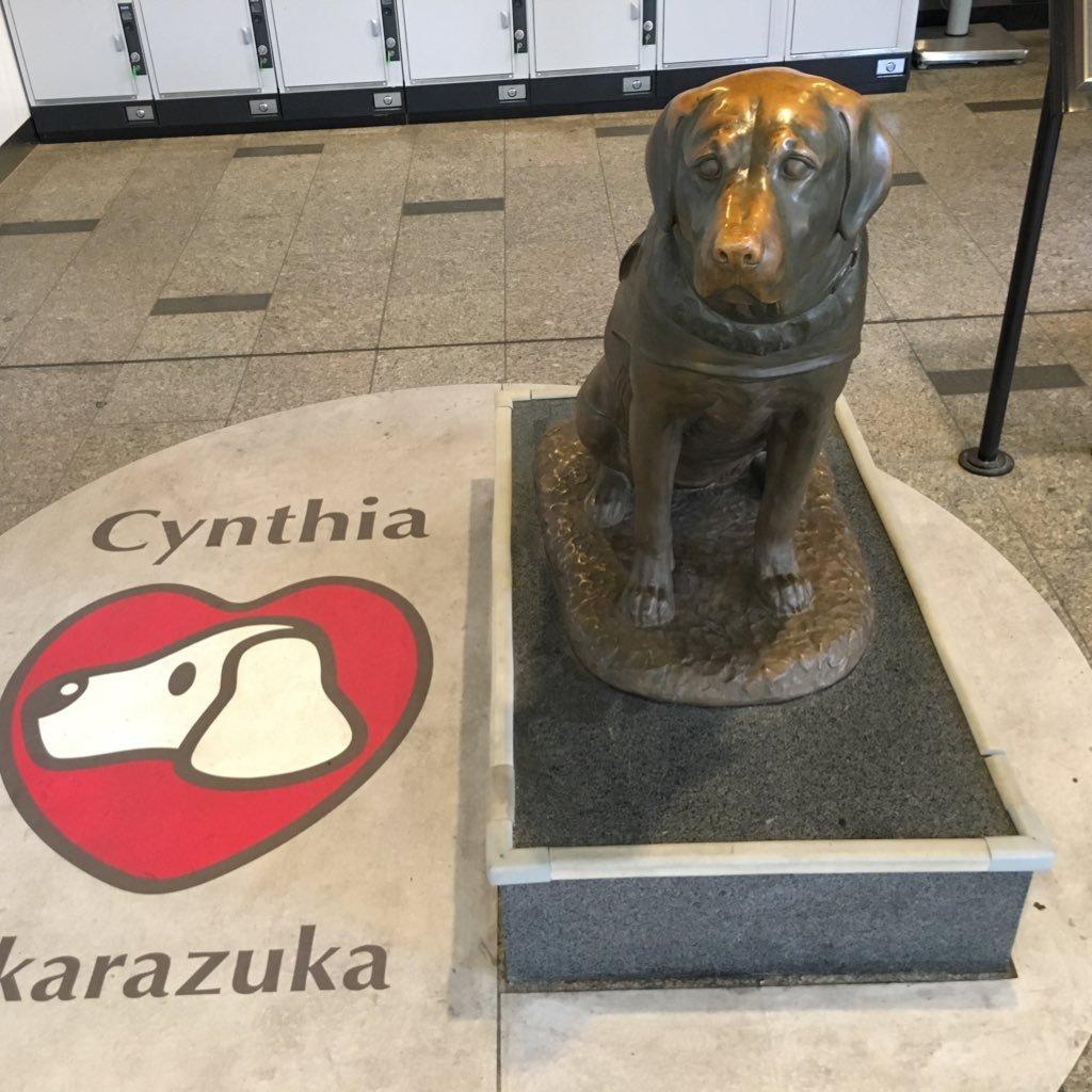 日本補助犬情報センター