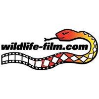 Wildlife Film News