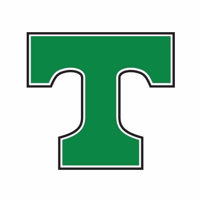 Image result for trinity shamrocks