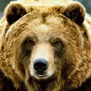 Grizzly Capital (@GrizzlyCapital) Twitter