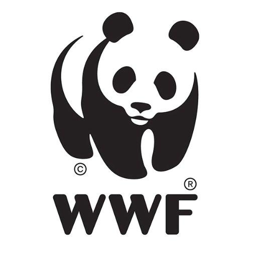 @WWFitalia