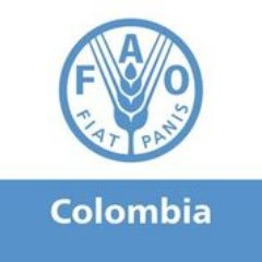 Resultado de imagen para fao colombia