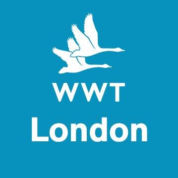 Logo de la société WWT London Wetland Centre