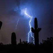 Crane Digital World