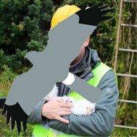 Stewart Abbott @birdman1066 Profile Image