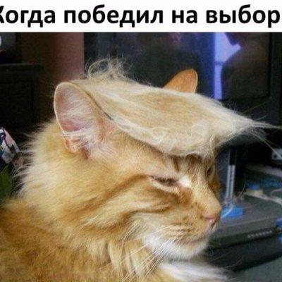 Тимофей D Trump