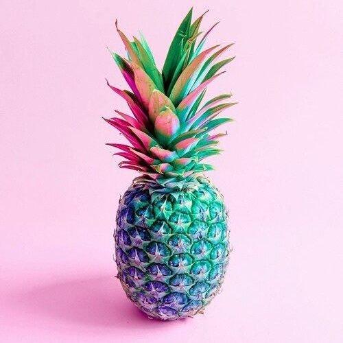 5a3d8258e5f Pineapple Princess (@pineapplegym) | Twitter