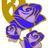 CFAwareness avatar