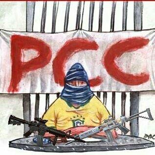 Pcc 1533