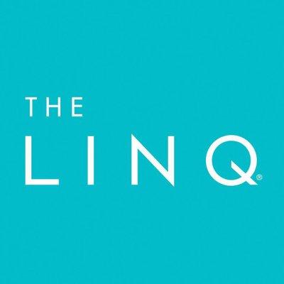Image result for linq logo