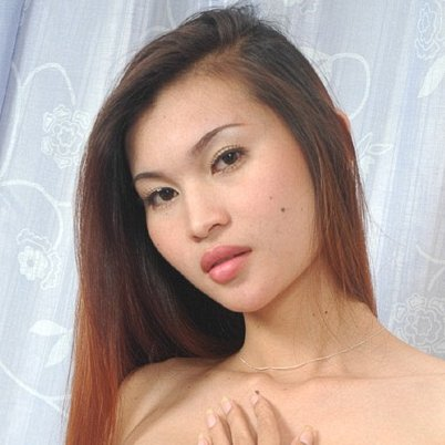 Thailand ladyboy Guide To