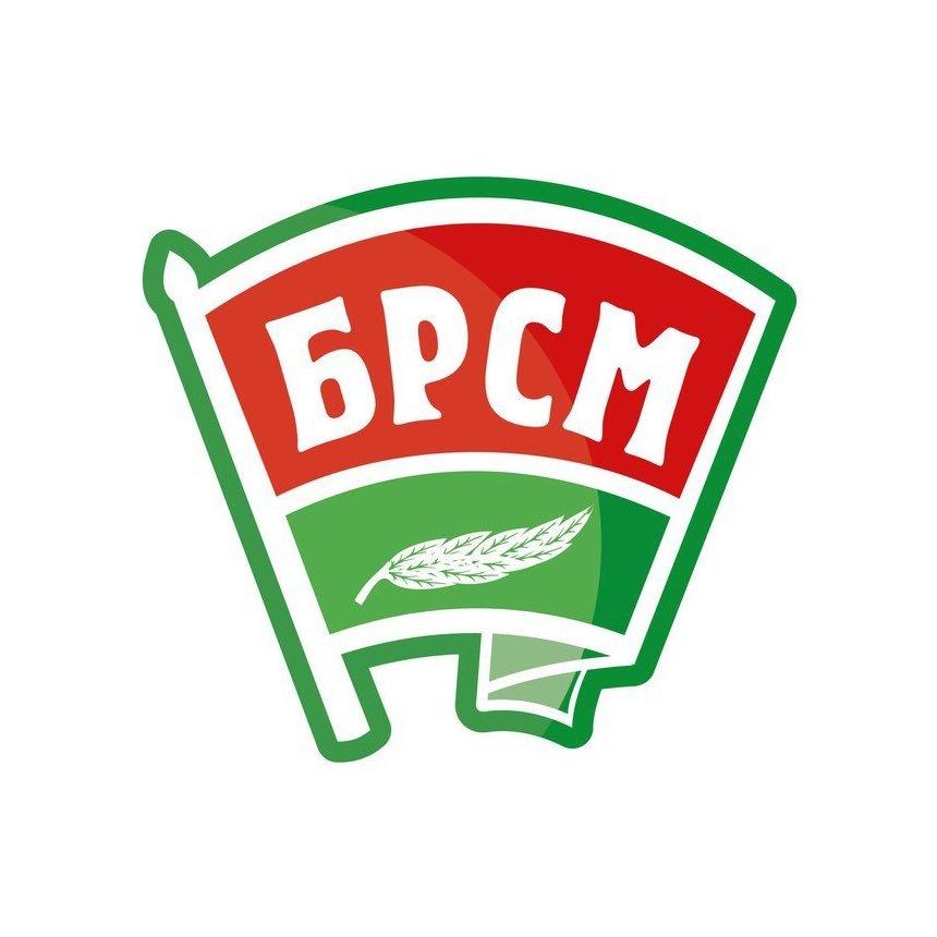Лидский райком «БРСМ» проводит онлайн-регистрацию желающих трудоустроиться в летний период.