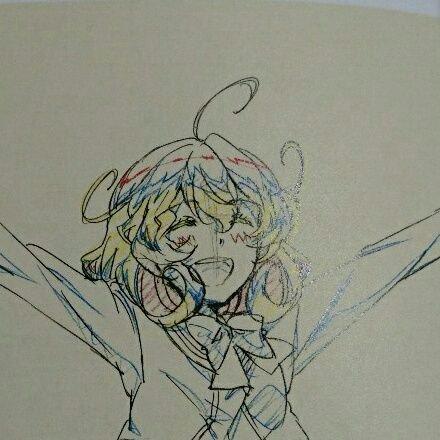 YNonohara