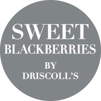 Driscoll's Sweet Blackberries