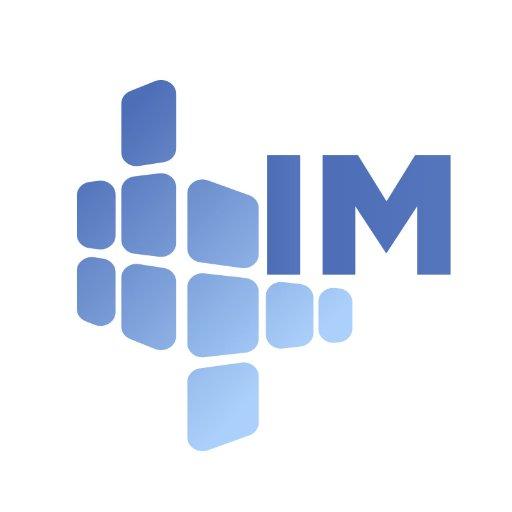 IM Consult Services