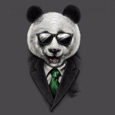 BTC Panda: Penipuan Bemodus Investasi Bitcoin