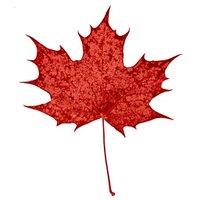 Canadian Resistance 🇨🇦