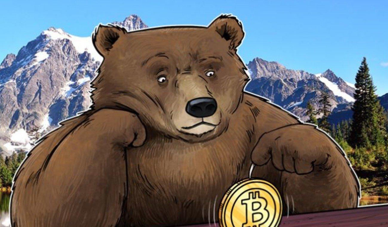 Bear Market On Crypto