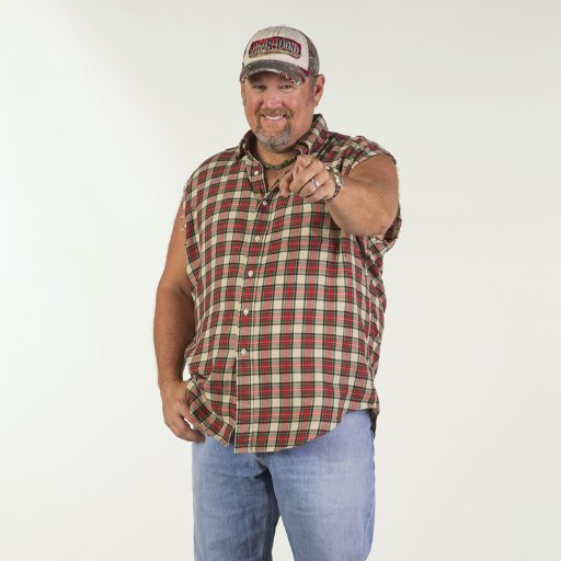 Larry The Cable Guy Social Profile