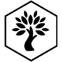 Olive Wellness Institute